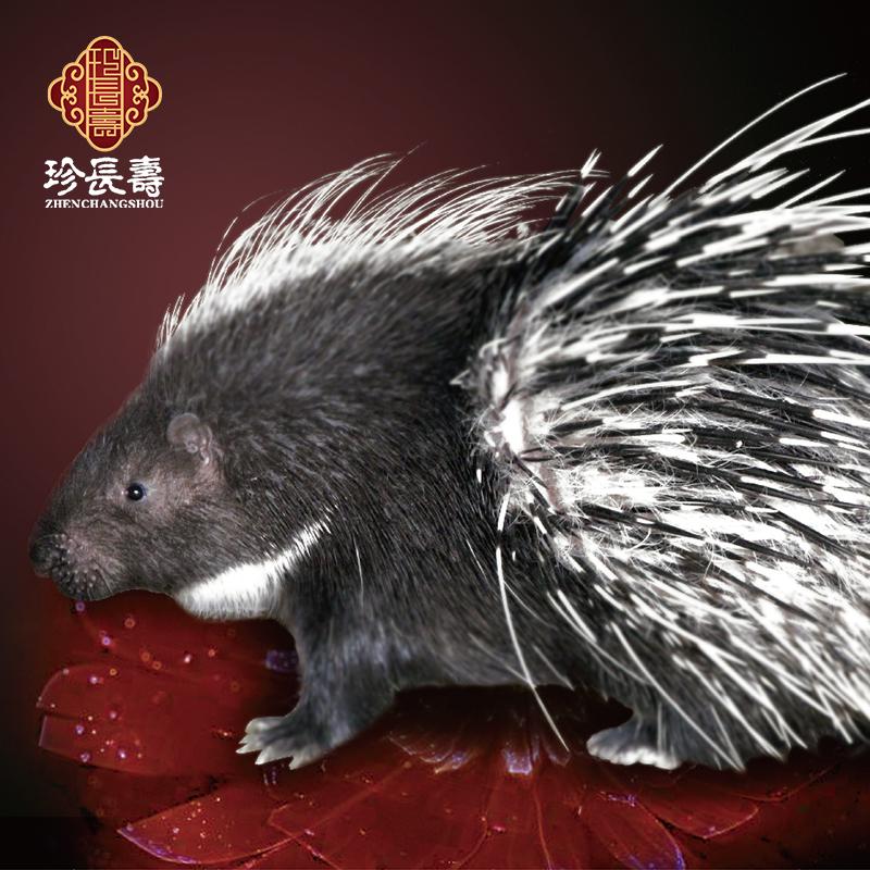 """【有机认证】周身是宝,不是猪的""""猪""""(亿博app注册淀基地年产量1万头)"""